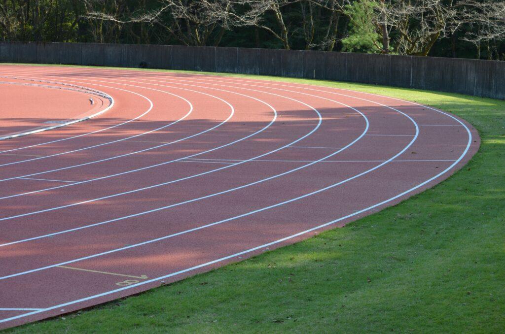 運動の種類による速筋・遅筋の付き方の違い